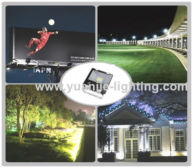 High quality 10/20/30/50W led cob floodlight