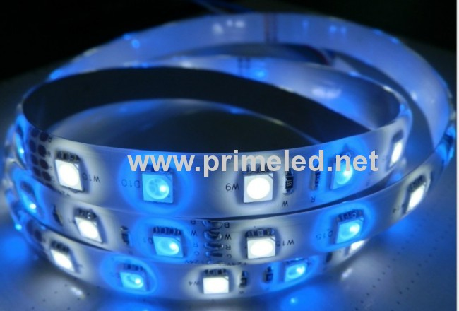 RGBW LED Strip lighting