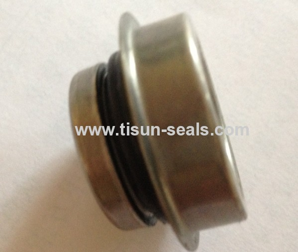 Auto cooling pump seals for car