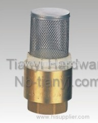 Brass Spring Check Valve with Stainless Steel Mesh