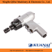 Hot Sale Professional Air Screw Drivers pistol type suitable for Motor Industry