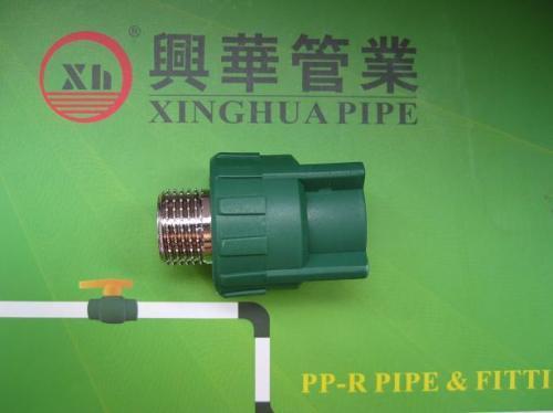 Popular PPR fittings plumbing material Male Coupling