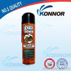 spray aerosol cockroach insecticide