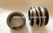 mechanical seal Origins