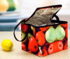 food can cooler bag