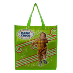 fashionable pp woven shopping bag