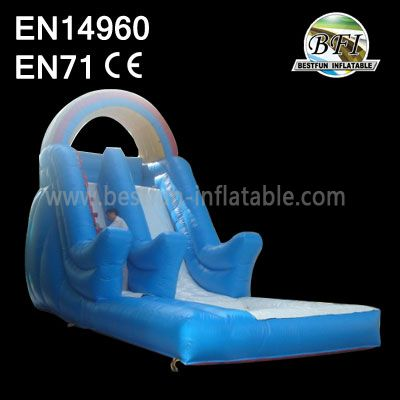 Commercial Water Slide With Pool