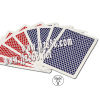 Bee Premium Plastic Playing Marked Cards