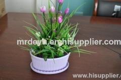 Biodegradable Plastic Flower Pots