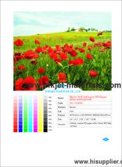 120mic Matte Self Adhesive PP Paper