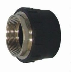 2013 hot sale PE Socket Fusion Fittings PE Female Thread Coupling