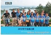 COLO sales team
