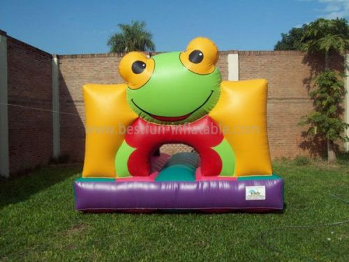 Toddler Frog Inflatable Bounce House