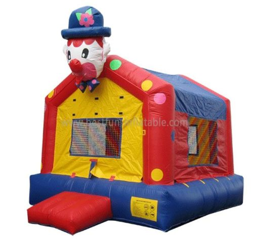 Roof Inflatable Clown Jumper
