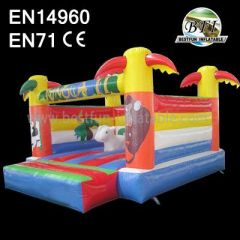 Indoor Mini Inflatable Bouncers
