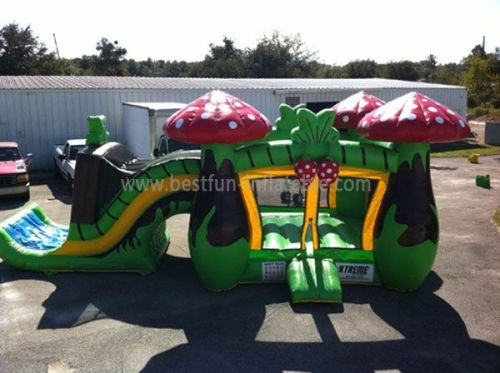 Mushroom Inflatable Slides and Castles