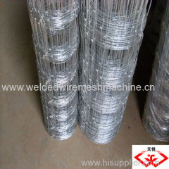 Holland welded wire fencing