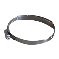 worm drive hose clamp with spring