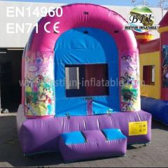Princess Theme Bouncy Castle For Sale