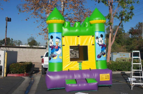 Green Bounce Houses With Different Theme Pannel