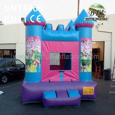 Princess Castle Play House