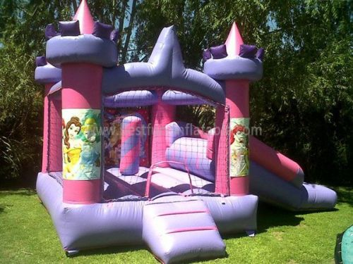 Inflatable Princess Bouncer Combo