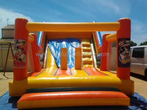 Inflatable Jumpers With Slide