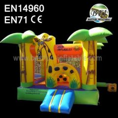 Best Quality Party Inflatables