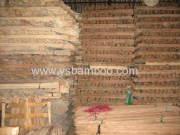 bamboo slats staking