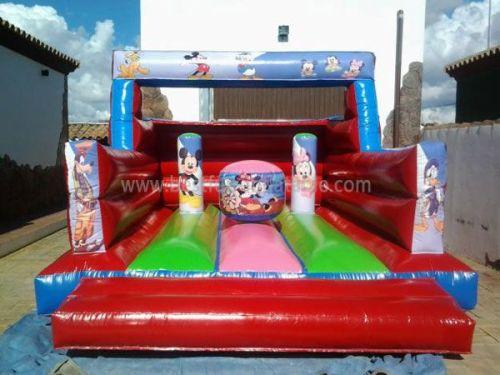 Mickey Air Jump Castle Rentals