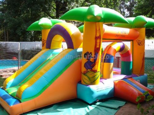 Bouncy House With Slide From Inflatable Manufacture
