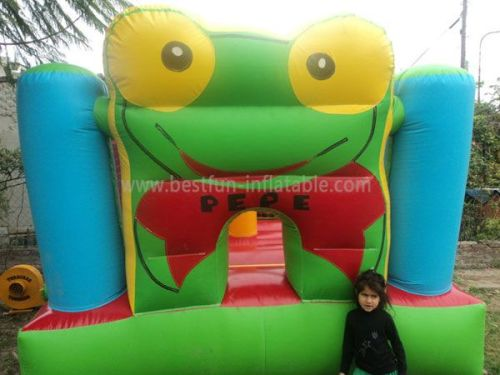 Cute Frog Bouncing Castles Inflatable Fun