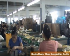 Ningbo Master Clean Commodities Co.,Ltd.