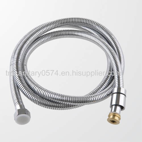 double clip stainless steel shower hose