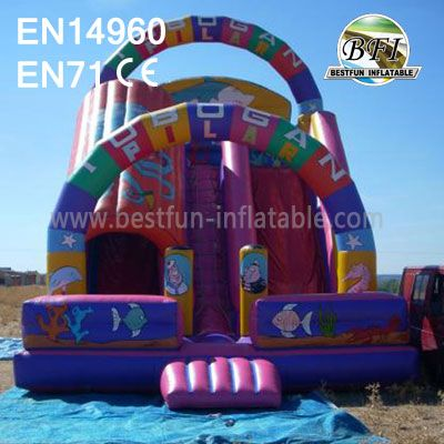 Tunnel Adult Inflatable Slides
