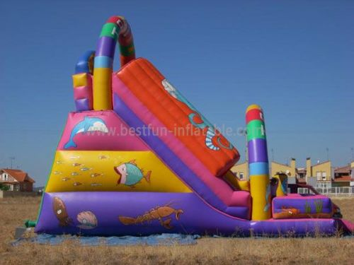 Dual Lanes China Inflatable Tunnel Slide