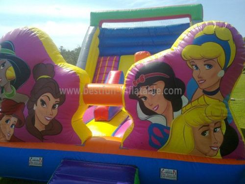 Affordable Princess Inflatable Water Slides