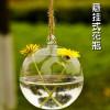 Circular Hang Borosilicate Glass Vases