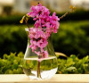 Fashionable And Simple High Transparent Glass Vase