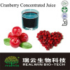 Pure Natural Cranberry Juice concentrate 65brix/Cranberry Juice