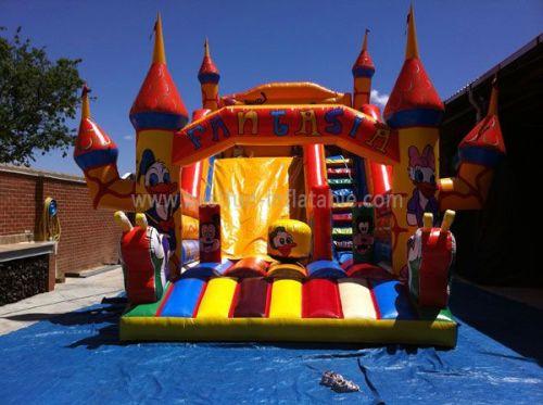 Outdoor Large Fantastic Bouncy Castle Slide
