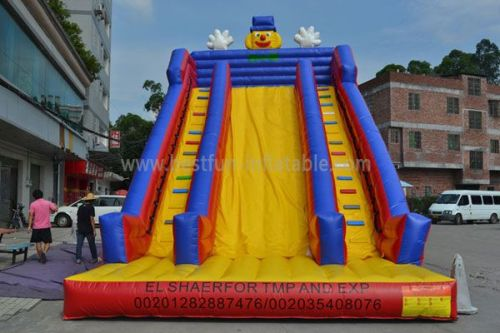 Outdoor High Quality Inflatable Slide