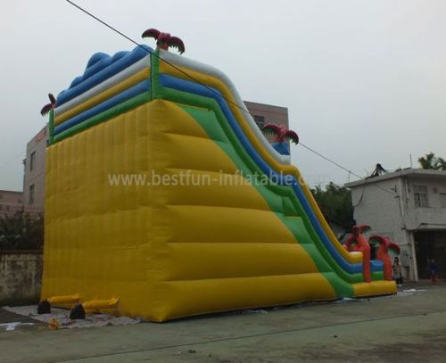 Big Inflatable Dual Slides