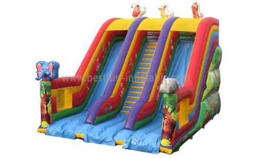 Double Lane Inflatable Commercial Slide