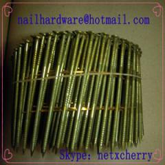 steel nail/wire nail/coil nail