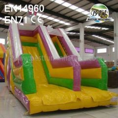 Rabbits Inflatable Slides For Kids