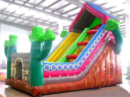 Backyard Inflatable House Slide