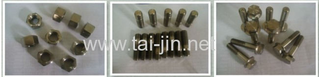 Titanium Fastener Nut Manufacturer