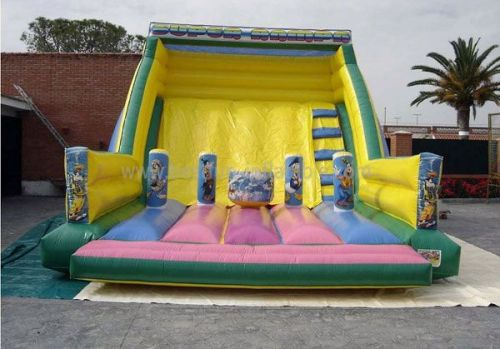 Super Inflatable Theme Slide And Bouncer