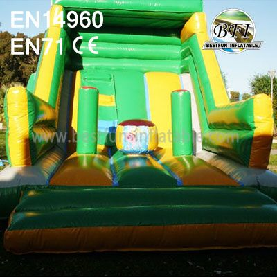 Custom Made Inflatable Slide Jumper